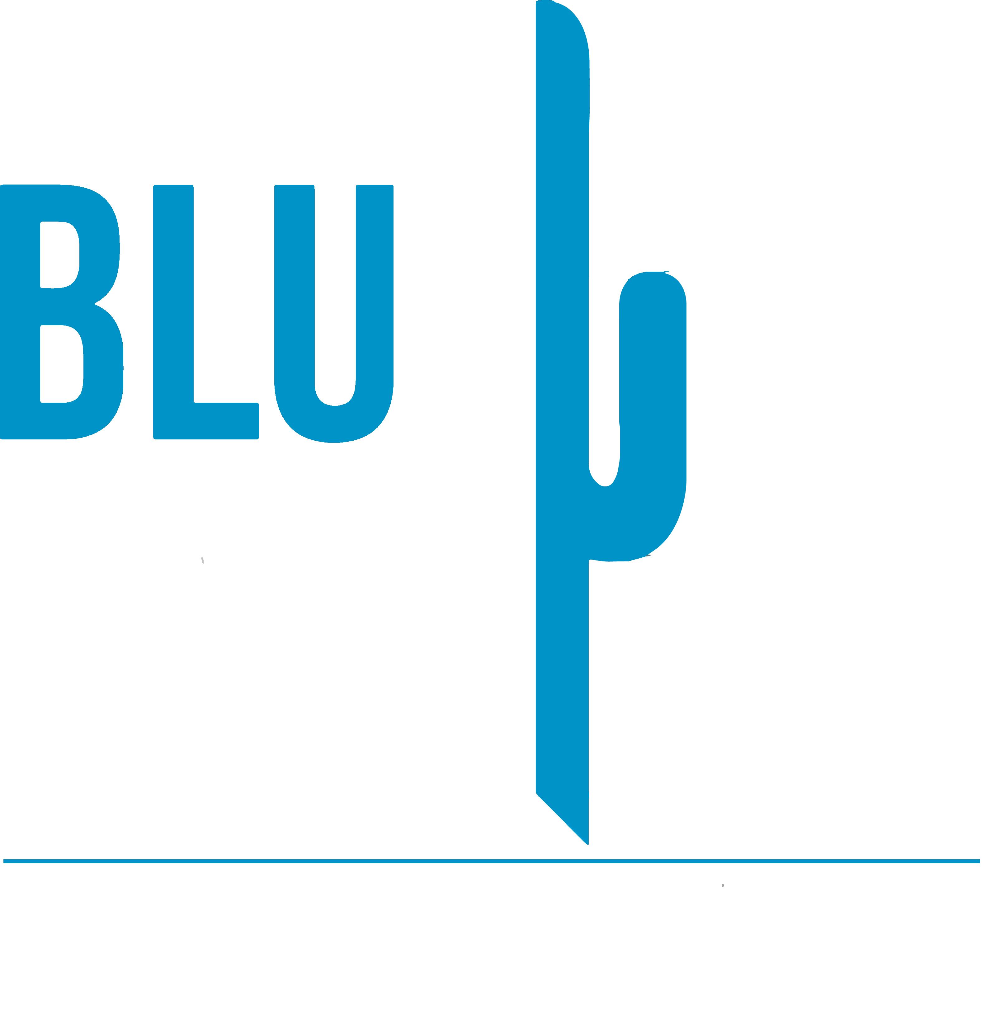BluCactus Logo White