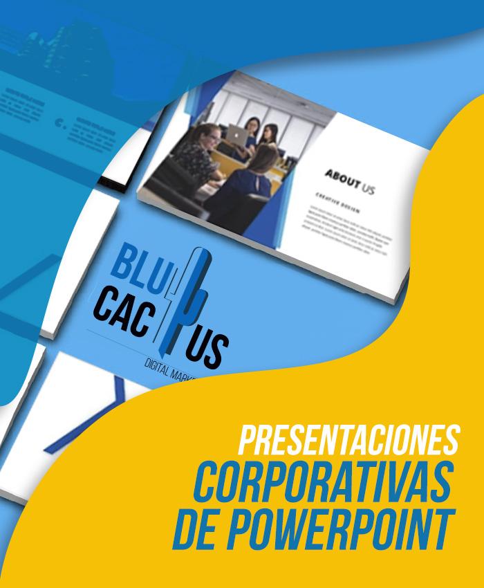 BluCactus Diseño de presentación corporativa