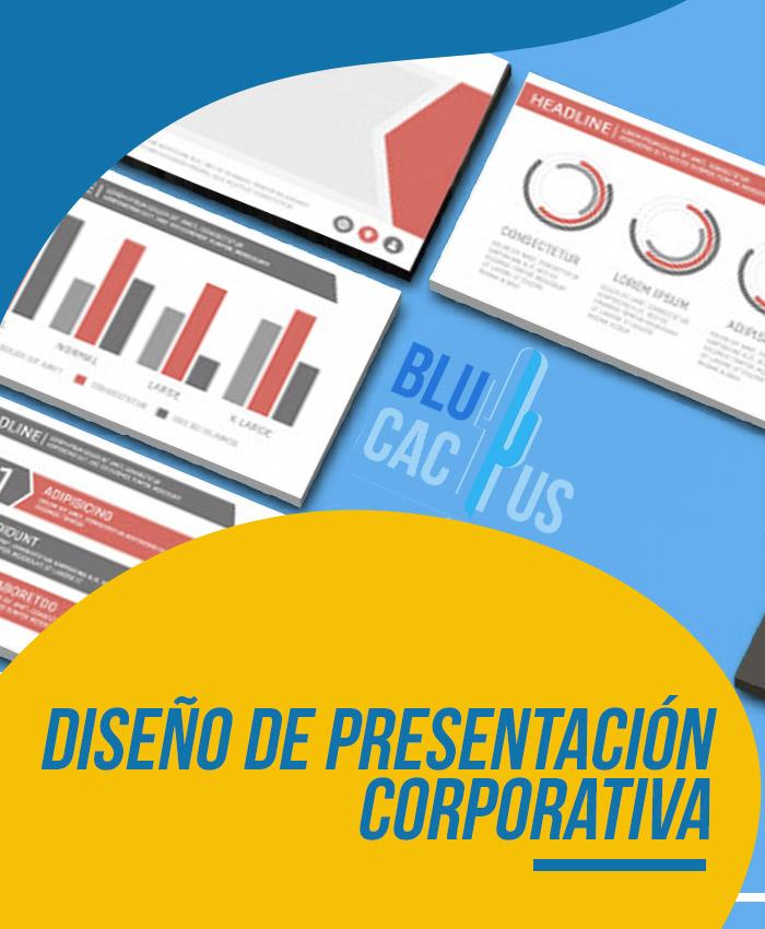 BluCactus Diseño de presentación ejecutiva