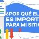 BluCactus-Por-qu®-el-SEO-es-importante-para-mi-sitio-web-Portada.