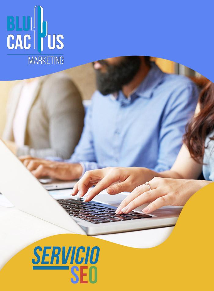 BluCactus - Consultor SEO