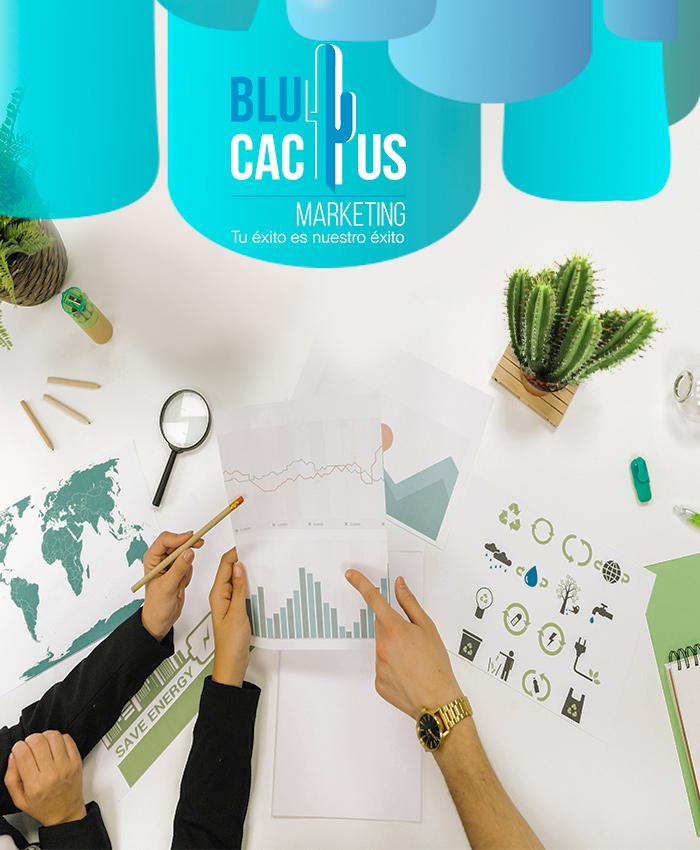 Blue Cactus - Agencia de Marketing Digital - El nacimiento de Blue Cactus