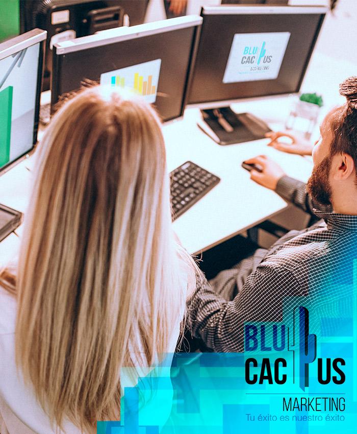 BlueCactus - El primer exito