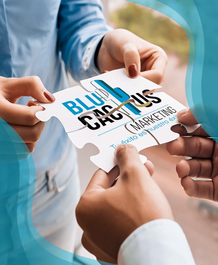 Blue Cactus - Agencia de Marketing Digital - Romprecabeza