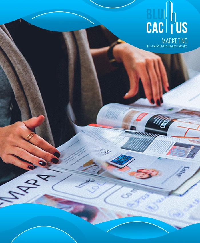 BluCactus - Diseño de Brochures