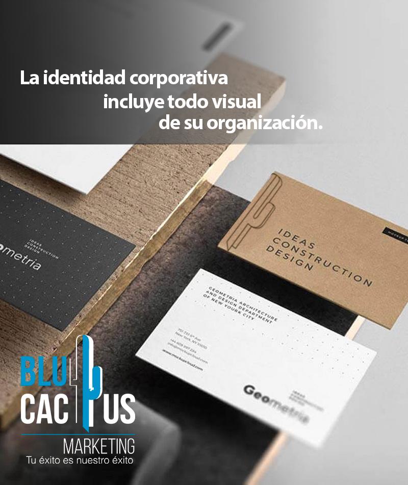 Blucactus Servicios Identidad La identidad corporativa incluye todo lo visual de su organización