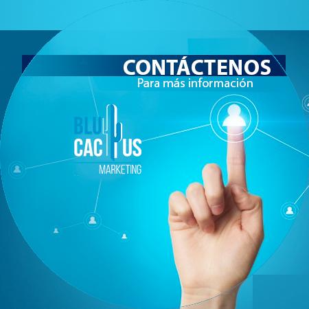 Blucactus Servicios Identidad corporativa Contáctenos para mayor información