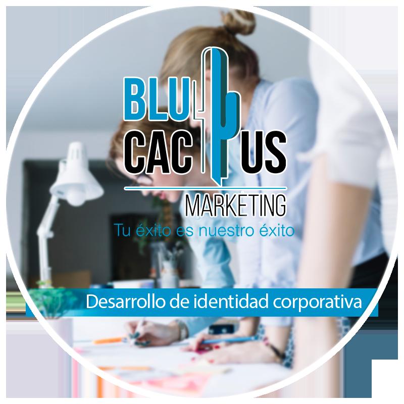 Blucactus Servicios Identidad corporativa Desarrollo de identidad corporativa