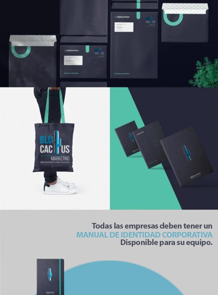 Blucactus Todas las empresas deben tener un manual de identidad corporativa