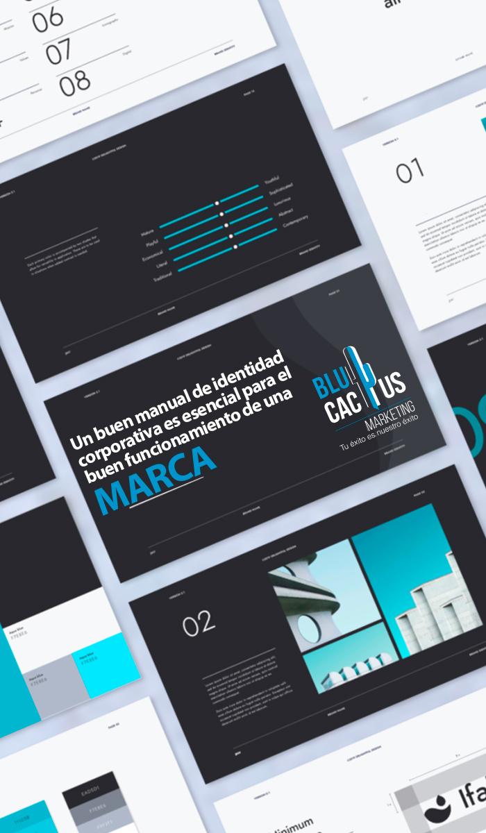 Blucactus Servicios Identidad corporativa Un buen manual de identidad corporativa es esencial