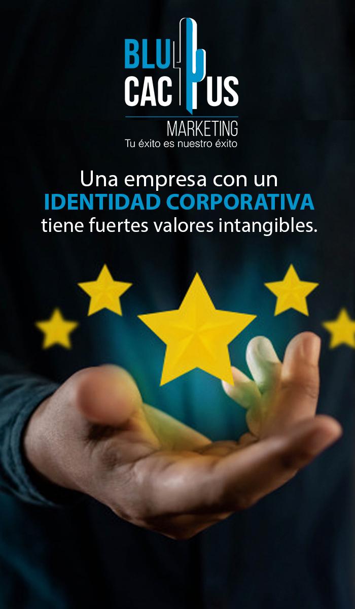 Blucactus Una empresa con una identidad corporativa tiene fuertes valores intangibles