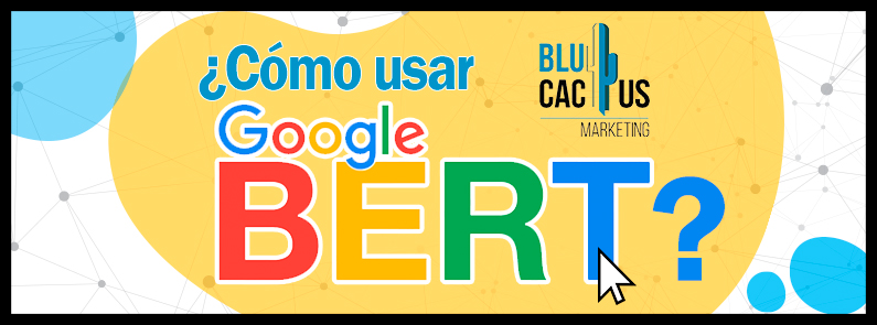Blucactus-Cómo-usar-google-Bert - titulo