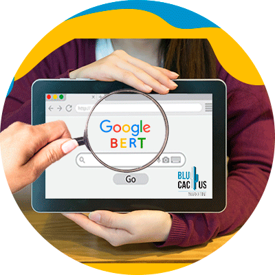 Blucactus-Cómo-usar-google-Bert - persona usando google