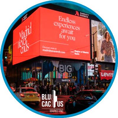 BluCactus -grandes formatos