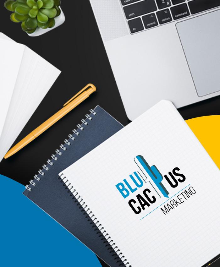 BluCactus - Contenido de Web Design