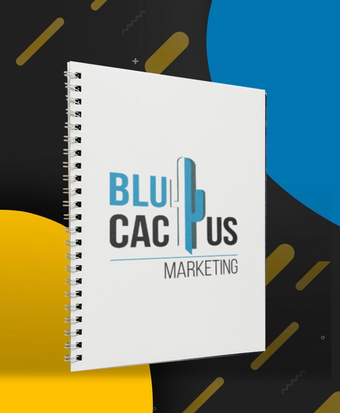 BluCactus - Redaccion de Contenido
