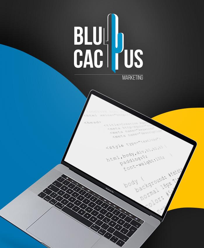 BluCactus - Web Codificacion y Desarrollo Web Design