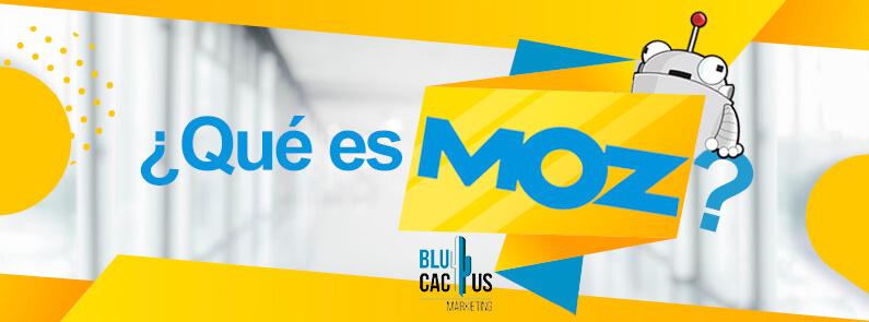 BluCactus-¿Qué es MOZ? - titulo