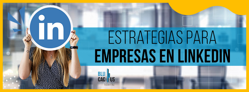 BluCactus - Estrategias para empresas en LinkedIn- titulo