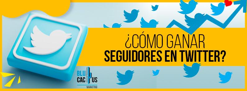 BluCactus - Seguidores en Twitter - titulo