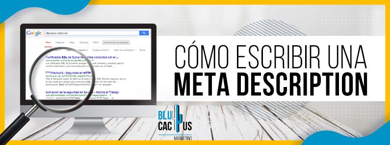 BluCactus - COMO ESCRIBIR UNA META DESCRIPTION - Titulo