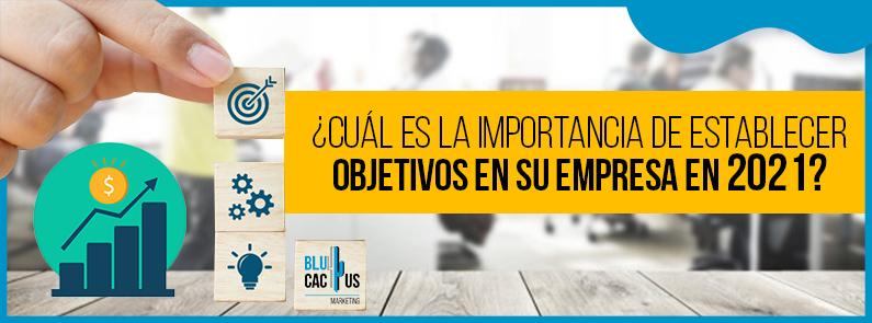 BluCactus - Objetivos en su empresa- titulo