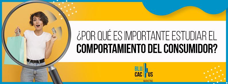 BluCactus - Comportamiento del consumidor - Title