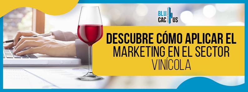 BluCactus - Marketing en el sector vinícola - title