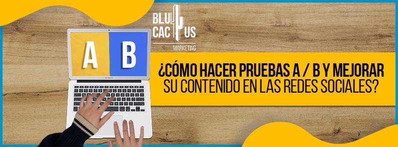 BluCactus -¿Cómo hacer pruebas A / B y mejorar contenido en redes? - titulo