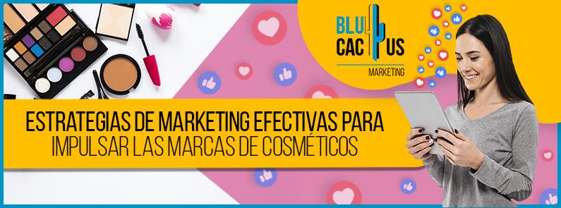 BluCactus - marcas de cosméticos - title