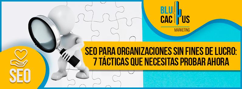 Blucactus-SEO-para-organizaciones-sin-fines-de-lucro-portada