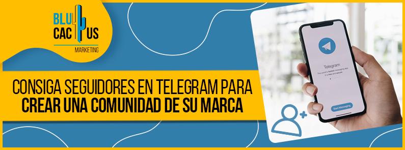Blucactus-Consiga-seguidores-en-Telegram-portada