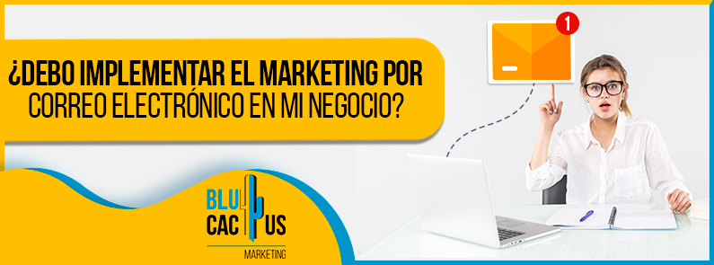 BluCactus - marketing por correo electrónico en mi negociomarketing por correo electrónico en mi negocio - Banner