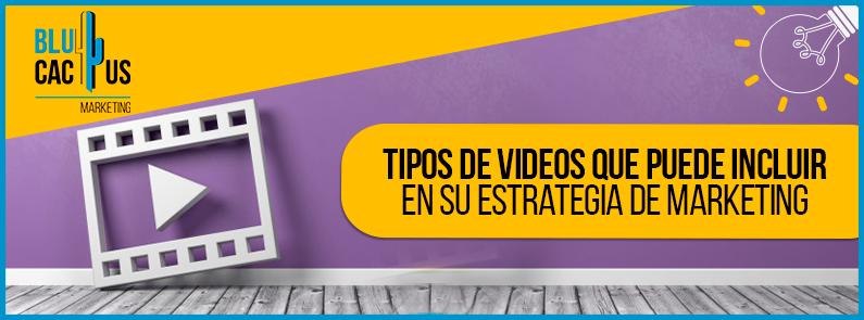 BluCactus - Tipos de videos - banner