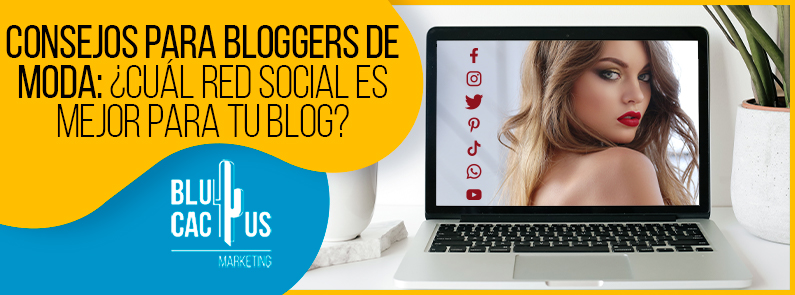 BluCactus - Consejos para bloggers