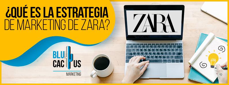 BluCactus - marketing de Zara