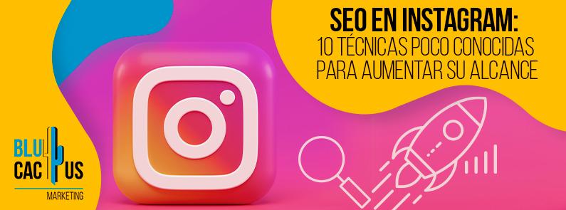 BluCactus - SEO en instagram